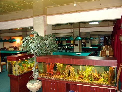 Billiard club Mayak.